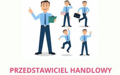 Oferta pracy : przedstawiciel handlowy